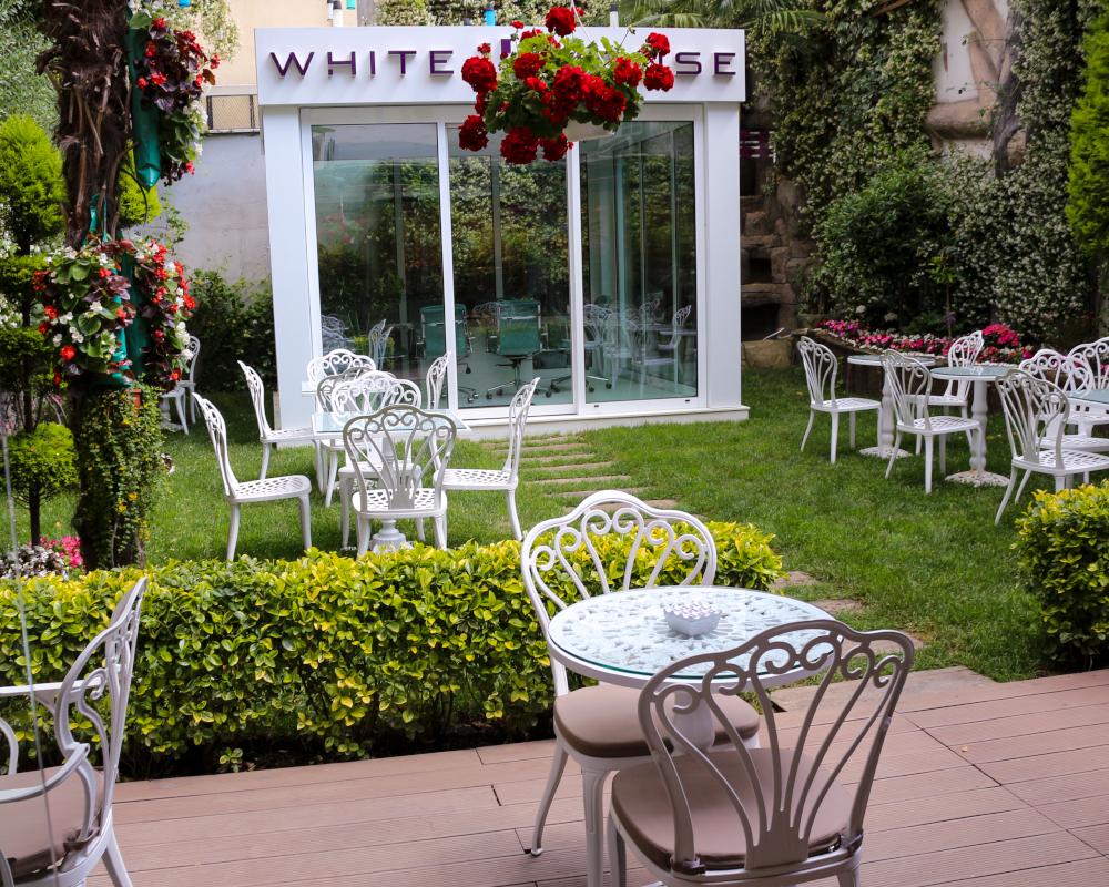 White House Garden 1