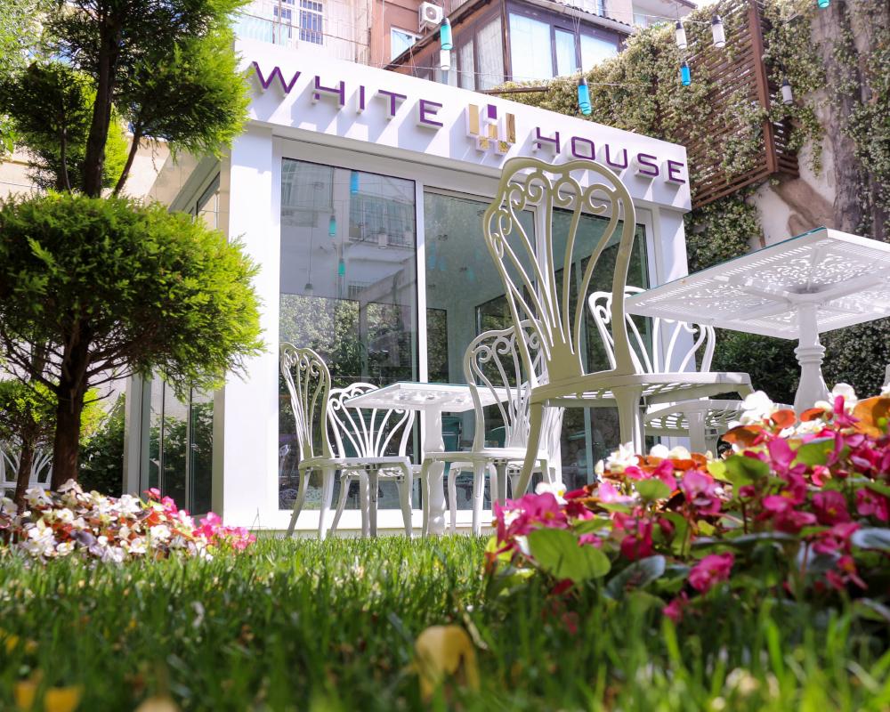 White House Garden 2
