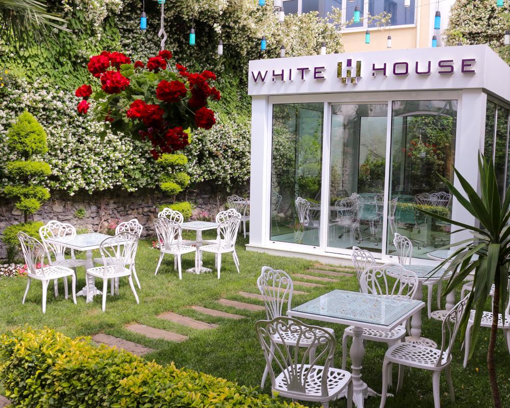 White House Garden 3