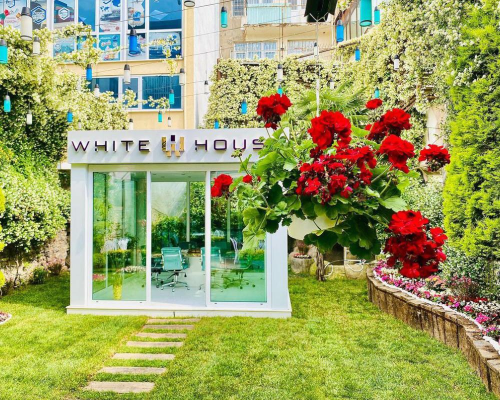 White House Garden 4