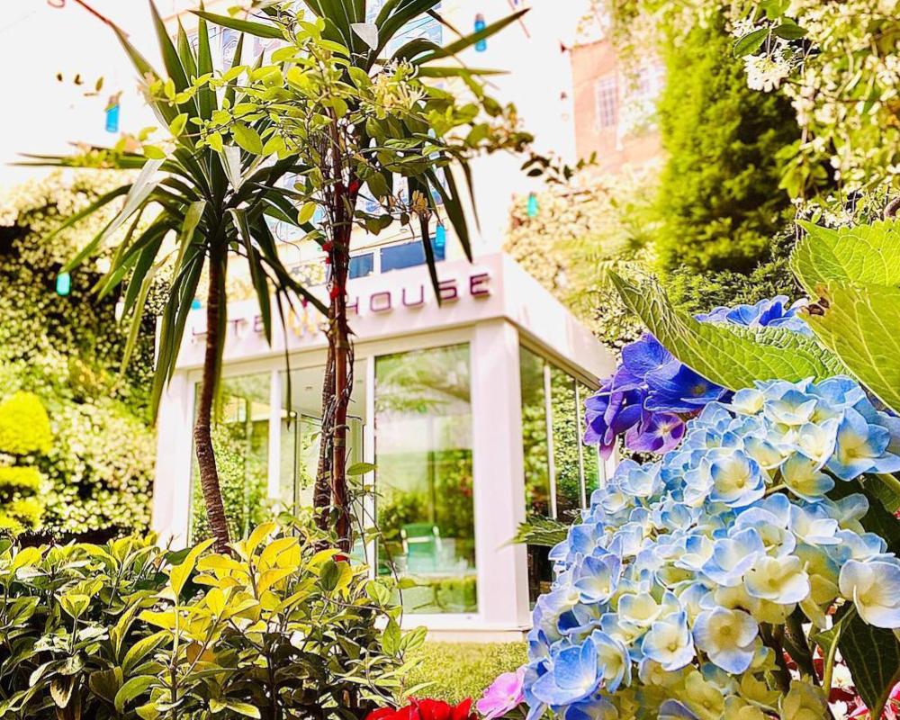 White House Garden 5